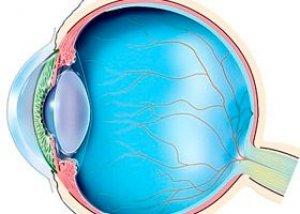 akių angiopatija su hipertenzija veiksmingi ir nebrangūs vaistai nuo hipertenzijos